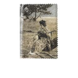 passeport shamisen