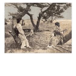 affiche shamisen